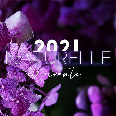 Jus et Soupes Détox, l'eBook - Valérie et Delphine vous souhaitent une merveilleuse année 2021